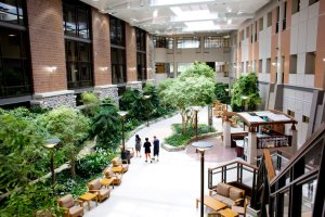 The atrium of the Henry Ford West Bloomfield Hospital